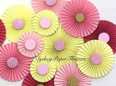 Paper fans backdrop - set of 20 WATERMELON juice https://www.etsy.com/au/listing/253139690/watermelon-lemonade-paper-rossetes