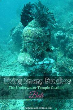 Diving among Buddhas