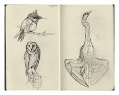 :Illustration:Gallery:Concept: by JAW Cooper: Camping Sketchbook