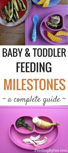 A complete guide to main feeding milestones for baby and toddler