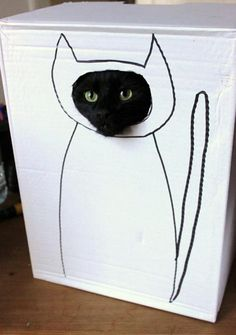 Step 1: Cut a hole in the box... - Imgur @Abbey Casavoy Can we do this to Annabelle ASAP?