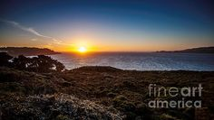 End Of The Day   Artist  Steven Reed   Medium  Photograph - Photography   Description  Sunset, looking out San Francisco Bay, California, usa.  #oceansidephotography #stevenreed