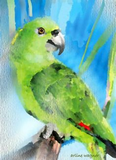 Green Parrot by Arline Wagner
