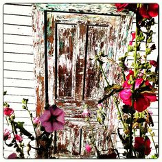 Shabby chic door. Rustic. White vintage
