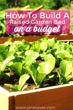 Building a budget raised garden bed was the BEST decision I made for my garden! If you live in an area with less than superb soil or you want to use the square foot gardening technique, building a raised garden bed is a must. I want to share the easy – and frugal! – method I used to build my raised garden bed and grow vegetables.