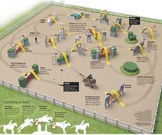 Infographic illustrating the sport of Horse show jumping. Produced by Belinda Ivey of KarBel Multimedia for the South Florida Sun Sentinel.