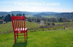 Youngberg Hill Vineyards and Inn McMinnville, OR March 2-8th, 2015 The Red Chair arrived at Youngberg Hill on a beautiful warm March weekend.  It was here to taste Oregon's amazing wines and meet some new friends.  It fit right into the rhythm of the area.  The area has a natural slow pace, revitalizing energy about it.  The Red Chair enjoyed looking at the beautiful views on top of the hill and at the 25 year old organic vineyard.  Its first friend was Archer the vineyard dog.  Archer took…