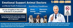 Get your Emotional Support Animal Prescription online! Qualification is easy, fast turnaround, from a licensed mental health professional. Pet Insurance Reviews, Insurance Comparison, Car Insurance, Linux, Animal Law, Animal Doctor, Cheap Pets, Emotional Support Animal, San Francisco