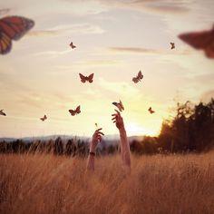 #Spring Symphony by Boy_Wonder, via Flickr. #butterfly #hands