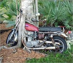 hard to believe, but it looks as if the tree grew over the motorcycle! LOL!