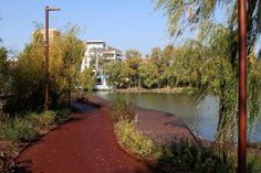 Iulius Parc- noul parc al Clujului Eastern Europe, Romania, River, Country, Places, Outdoor, Lawn, Park, Outdoors