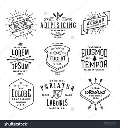 Collection Monochrome Hipster Vintage Label, Logo, Badge For Your Business Or…