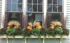 Fall into winter window boxes - I tried to do something like this last year but couldn't ever find cabbages.  Maybe this year!