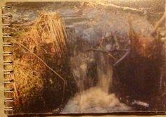 Luonto kuva teoksen tekijä Mikko Lehtonen  Video ifolor itsen tehnyt tämän taiden aihe