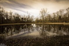 Bloody Pond at from the Civil War battlefield at Shiloh National Military Park in Tennessee.