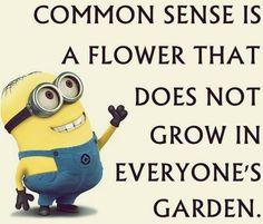 Minion quotes funny (09:16:34 PM, Monday 29, June 2015 PDT) – 10 pics #funny #lol #humor #minions #minion #minionquotes #minionsquotes #despicableme #despicablememinions