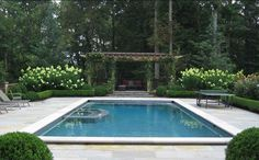 love the hedge around this pool and beautiful blue color