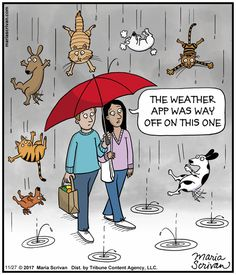 Nov 2017 idiom -- Raining Cats and Dogs Grammar Funny, American Idioms, Dog Comics, Idiomatic Expressions, Cat Fun, Raining Cats And Dogs, Figurative Language, Calvin And Hobbes, English Lessons