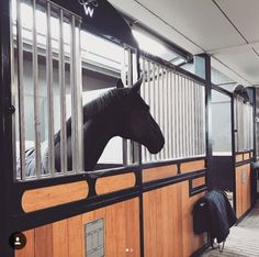horse inside of its stall