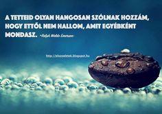 Ralph Waldo Emerson gondolata a tettek erejéről. A kép forrása: Tárjuk fel előző életeinket Ralph Waldo Emerson, Life Quotes, Texts, Touch, Bottle, Quotes About Life, Quote Life, Living Quotes, Flask