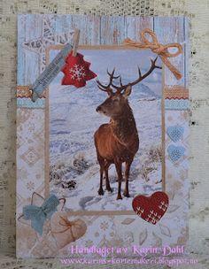 Karins-kortemakeri: Studio Light Studio Lighting, Smash Book, Moose Art, Lights, Animals, Creative, Animales, Animaux, Animal