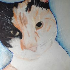A cat i did of my friends cat
