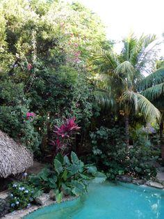 The tropical garden and refreshing pool at the Genesis Retreat, Ek Balam, Yucatan, Mexico.