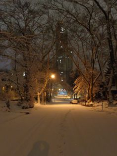 January 2015 Snow on Lytton Ave, Schenley Farms, Oakland, Pittsburgh, PA