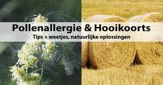 Pollenallergie & Hooikoorts klachten bestrijden. Tips + weetjes, natuurlijke oplossingen. Niezen, kriebel en loopneus, tranende, jeukende ogen, benauwdheid.