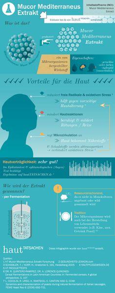 Mucor Mediterraneus Extrakt, kosmetischer Inhaltsstoff, antioxidative Wirkung, Gewinnung per Fermentation