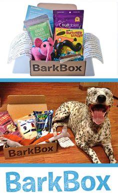 Memphis & Belle LOVE their monthly bark box!