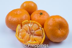 Kishu Tangerine - Search by flavors, find similar varieties and discover new uses for ingredients @ preppings.com