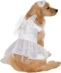 Angel Pet Costume