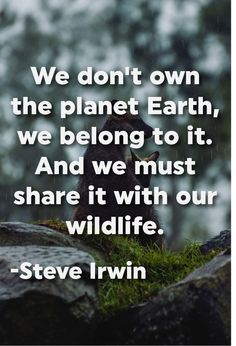 """We don't own the planet Earth, we belong to it. And we must share it with our wildlife."" -Steve Irwin"