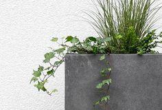 Viano Pflanzenkübel Fiberglas Betonoptik