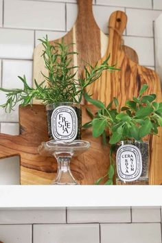 DIY: Repurpose Candle Jars into an Indoor Herb Garden. Turn your old candle jars into a beautiful and stylish indoor herb garden for the kitchen! Old Candle Jars, Old Candles, Diy Home Crafts, Diy Craft Projects, Diy Home Decor, Craft Ideas, Home Decor Trends, Home Decor Inspiration, Decor Ideas
