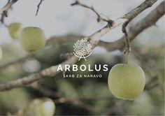Arbolus on Behance