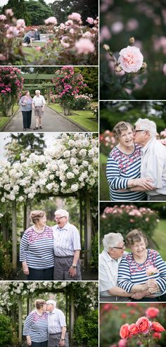 Romantic and sweet grandparent pictures. Rose Garden portraits of Grandparents by Amy Caroline Photography. Denver based wedding photographers.