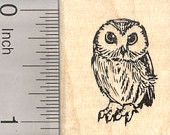 Owl Rubber Stamp, Small D25105 Wood Mounted