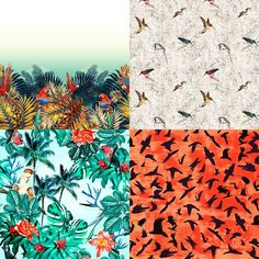 Bird Lifeinspired Patternbank Studio Designs by EJ Designer, Printmuse, Stamppa,Lubica Hlubenova