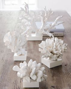 Faux Coral Sculptures - Inspiration from the Sea - Coral Washed Up by the Waves or The White Coral Reef. Clay Crafts, Diy And Crafts, Coral Art, Sea Coral Decor, Beach Crafts, Organic Shapes, Beach Themes, Coastal Decor, Sea Shells