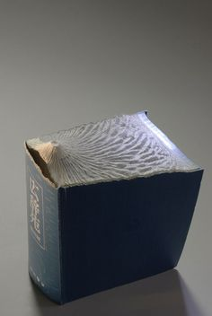 """Canadian artist Guy Laramee has recently published a new series of his amazing book landscapes which are made by carving old books, dictionaries and encyclopedias. He calls his new project """"Guan Yin"""" and dedicates it """"to the mysterious forces thanks to which we can traverse ordeals""""."""