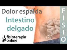 Tratamiento para dolor de espalda y dolor lumbar o lumbalgia provocado por colon irritable - YouTube