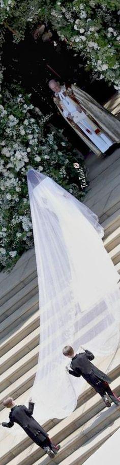 ❈Téa Tosh❈ Megan arrives… Royal wedding 2018: Prince Harry, Meghan Markle marry.