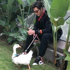 Baekhyun, Exo, Kris Wu, Cute Boys, Baby Strollers, Wattpad, Children, Baby Ducks, Baby Prams