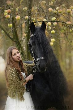 Cool photo of horse.