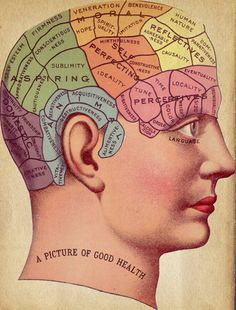 "Vintage Surreal Print ""Phrenology Chart"" Antique Medical Illustration - Fortune Telling Occult Anatomical - Head Skull Gothic Dark VIctoria. $30.00, via Etsy."