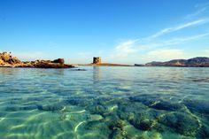 Au-delà de son incroyable beauté naturelle, de la richesse de sa culture et de son superbe climat, la Sardaigne accueille certains des meilleurs restaurants au monde. Voici donc une sélection de ces meilleurs restaurants de...