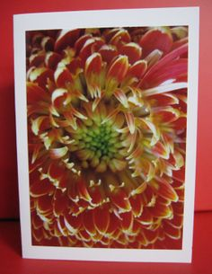 Any Occasion Card with Orange Chrysanthemum