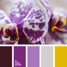 оттенки лилового, оттенки сиреневого, оттенки фиолетового, подбор цвета, пурпурный, светло-фиолетовый, сиреневый, темный-фиолетовый, цвет сирени, цветовое решение для дизайна, яркий желтый, яркий фиолетовый.